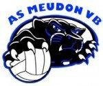 logo-volley-2-150x125 dans Club Omnisports